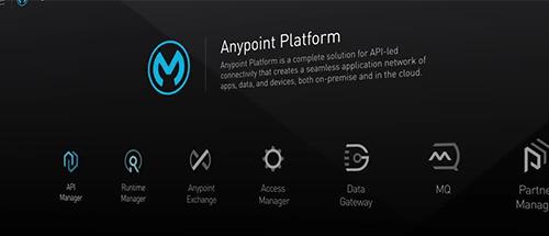 anypoint platform ipaas